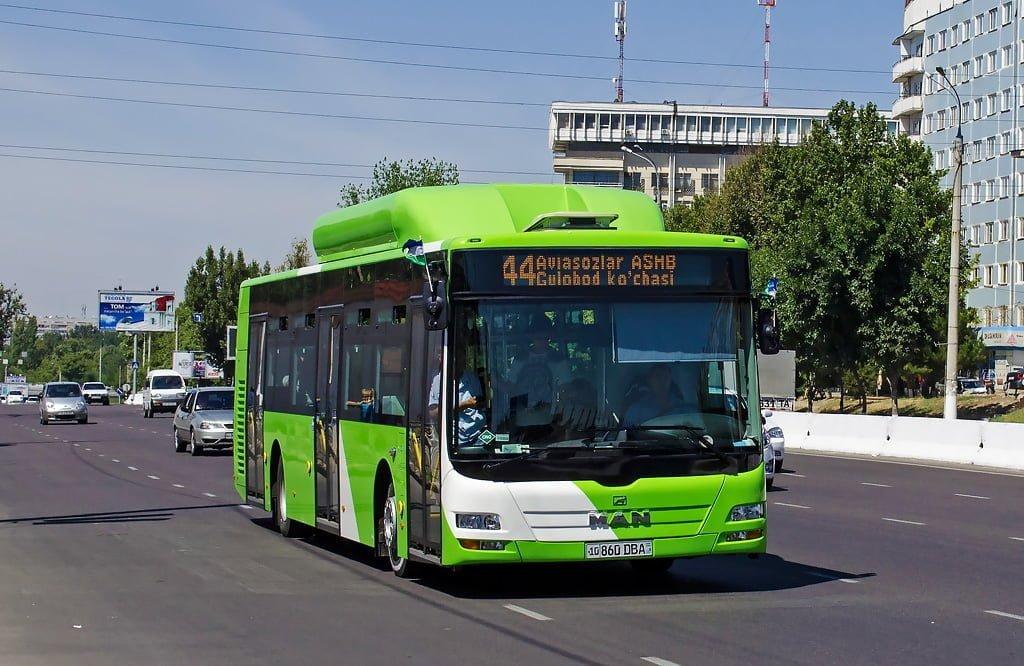 Автобус MAN в Ташкенте