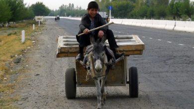 Photo of Депутаты рассмотрят закон о снижнении таможенных пошлин на иномарки
